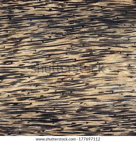 sugar palm wooden backgrounds/textures