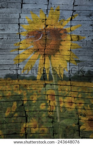 """sunflower field in Thailand"" The brick painting concept - stock photo"
