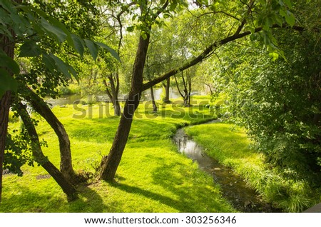 Sunny landscape with a creek and trees