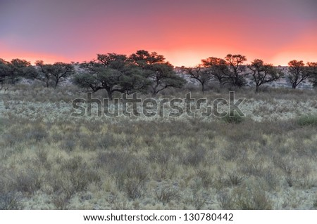 Sunset at Grootkolk in the Kalahari desert, Kgalagadi transfrontier park,South Africa.  9 image exposure fusion. - stock photo
