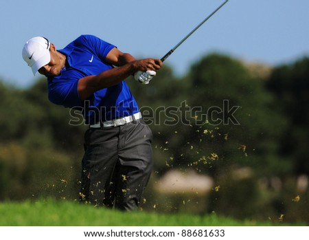 SYDNEY - NOV 11: - American golfer Tiger Woods plays from the rough in the third round at the Emirates Australian Open at The Lakes golf course. Sydney - November 11, 2011 - stock photo