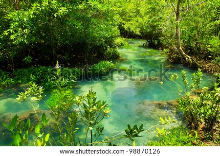 Tha pom nature trail and Crystal stream, Krabi, Thailand - stock photo