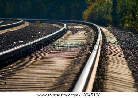 The railroad in the woods
