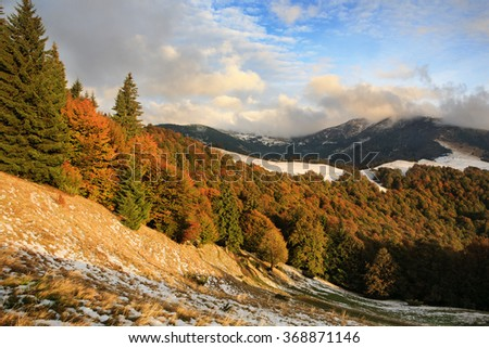 The slopes of the Carpathians in the light of the setting sun