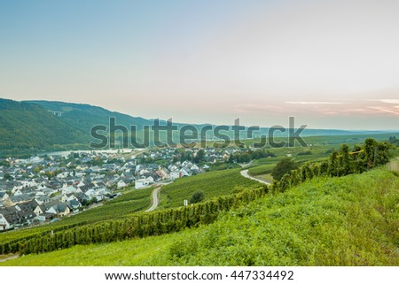 The vineyards and the small European town. Germany. Beautiful landscape with green grape vines,  roads and small town at sunset. At the bottom of the Moselle river and the hills.  the wine region.