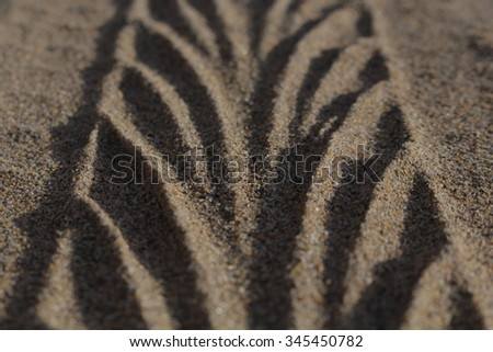 Tire Tracks in Sand  (Extreme Close Up  / Shallow depth of field ) - stock photo