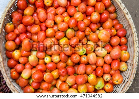 Tomatoes sold in the market