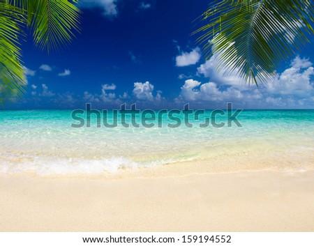 tropical sea under the blue sky - stock photo