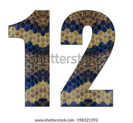 12 twelve number on white background modern reptile,idea applied number design skin texture snake modern number on 1,12,2 white background - stock photo