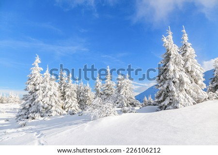 Unbelievable christmas holiday in the carpathian canyon covered with white lace and a clear blue sky and clouds. - stock photo