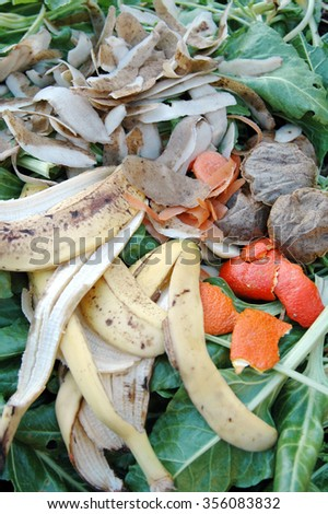 Vegetable and green waste on a garden compost heap.                        - stock photo