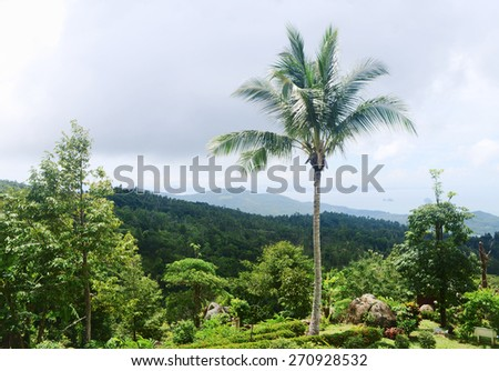 View point of Paradise Park Farm, Koh Samui, Thailand.