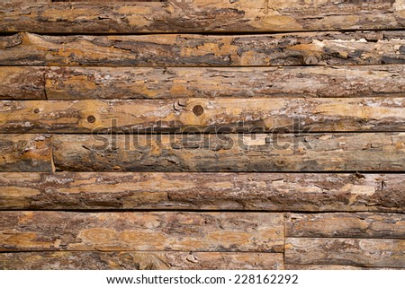 Wall of log  - stock photo
