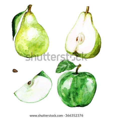 Watercolor Fruits  - Pear and Apple - stock photo