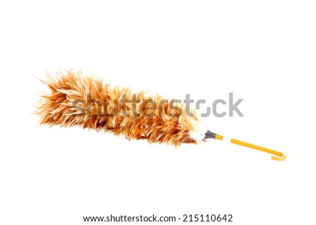 Whisk made from chicken hair - stock photo