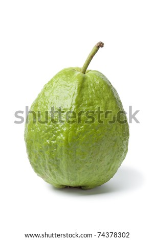 Whole single fresh guava isolated on white background - stock photo