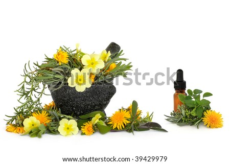 Wild flower and herb leaf selection  with a granite mortar with pestle and aromatherapy essential oil glass bottle, over white background.