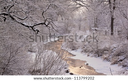 Winter river with ducks - stock photo