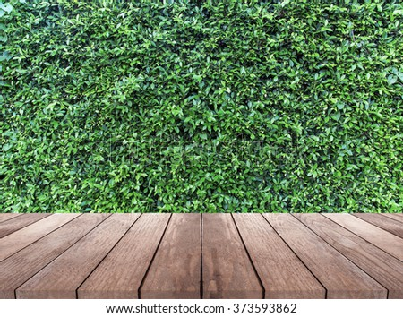 wood plank and green leaves wall  background - stock photo