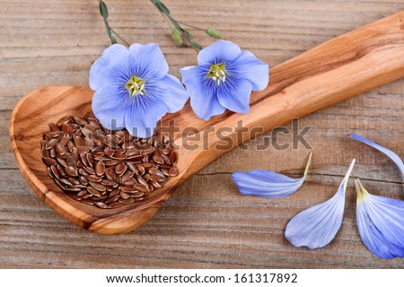 'Wood spoon with flaxseed and linum blossoms - stock photo