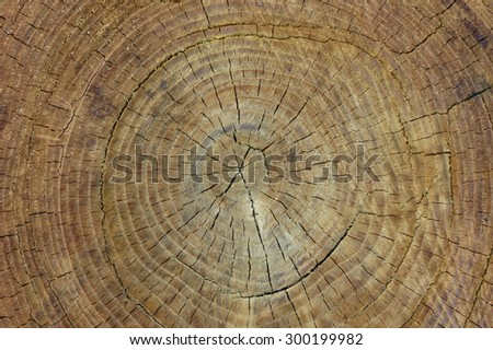wood texture useful as a background - stock photo