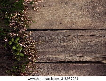 Wooden background with herbarium, free space for text  - stock photo