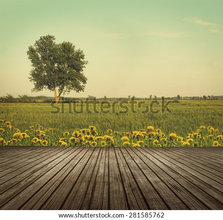 Wooden table top in open fields of dandelions with tree in background - stock photo