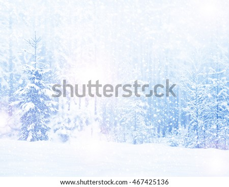 woods. Winter landscape. Snow covered trees. christmas background