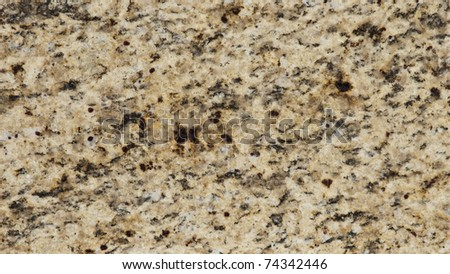 1x4ft Sample of Brazilian Giallo Ornamental Gold Granite - stock photo