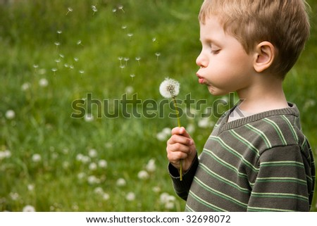 4 years old boy blowing dandelion in summer day - stock photo