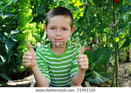 8 years old boy with his vegetables  in vegetable garden - kids - stock photo
