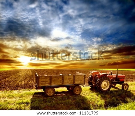 a agriculture landscaped - stock photo