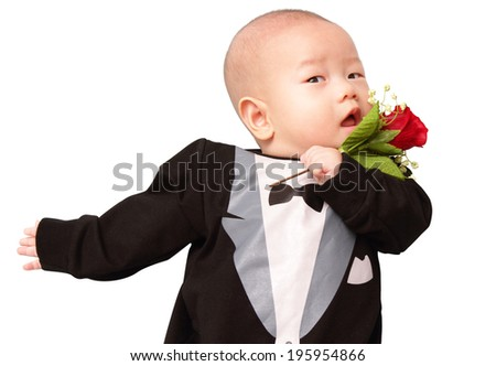 A baby wearing a tuxedo costume holding a rose - stock photo