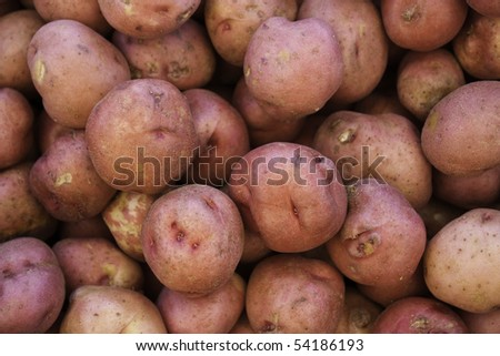 a background of a bunch of small red potatoes - stock photo