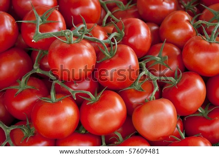 A background of fresh vine tomatoes for sale at a market - stock photo