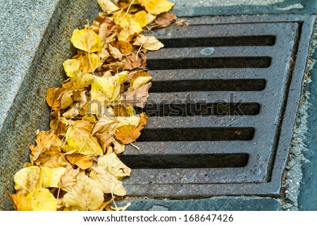 A background of leaves in the grate. - stock photo