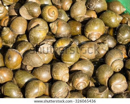 A background of periwinkles for sale at a market - stock photo