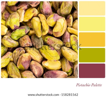 A background of shelled pistachio nuts, in a colour palette with complimentary colour swatches - stock photo