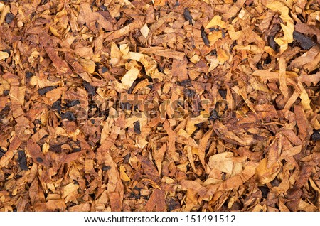 A background of tobacco flakes - stock photo