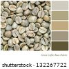 A background of unroasted coffee beans in a colour palette with complimentary colour swatches. Part of a series of five images showing grades of roasted coffee. - stock