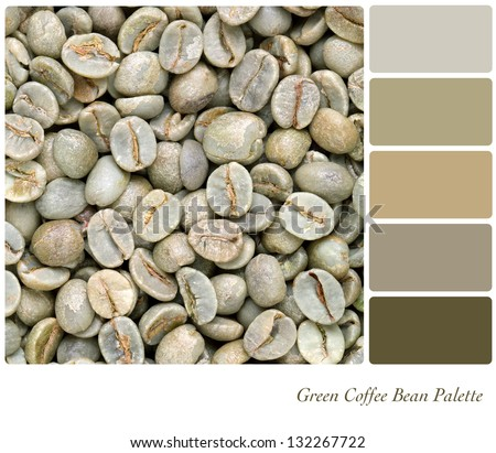 A background of unroasted coffee beans in a colour palette with complimentary colour swatches. Part of a series of five images showing grades of roasted coffee. - stock photo