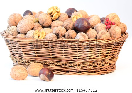a basket filled with walnuts isolated on white