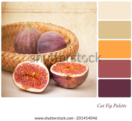 A basket of cut and whole figs, vintage style, in a colour palette with complimentary colour swatches - stock photo