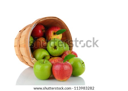 A basket of fresh picked Gala and Granny Smith Apples on its side with fruit spilling out. Horizontal format over a white background with reflection. - stock photo