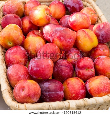 A basket of fresh plums at the market