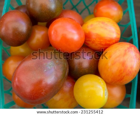 A basket of heirloom tomatoes at the farmer's market - stock photo