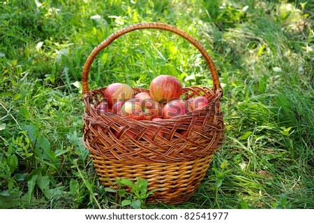 A basket of red apples is on the grass