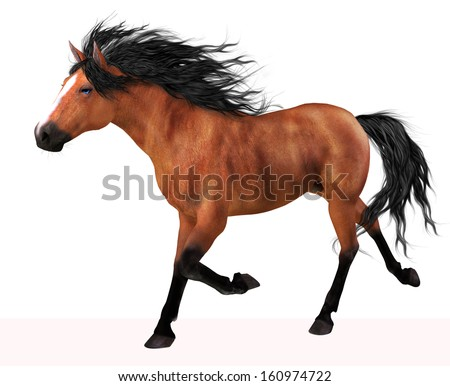 He-horse Stock Photos, Images, & Pictures | Shutterstock - photo#35