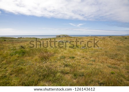 A beach park view with grass and bench - stock photo