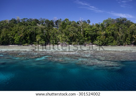 A beautiful and diverse coral reef fringes a tropical island in Marovo Lagoon, Solomon Islands. This lagoon encompasses the Marovo Lagoon World Heritage Area and is popular for diving and snorkeling. - stock photo